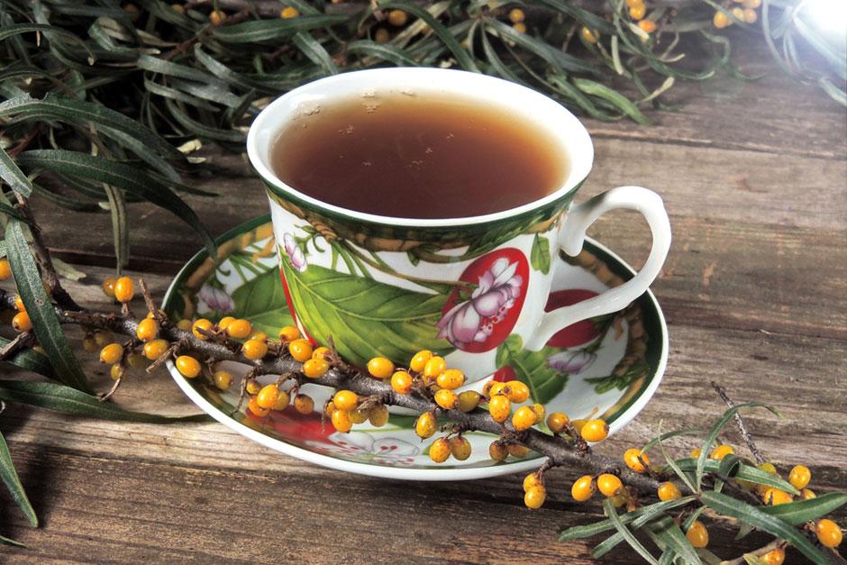 rooibos tea fogyás előnyei)